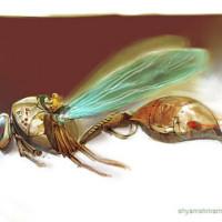 BeeShip.jpg